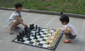 Giant Chess Setgarden Chess Setoutdoor Chess Setchess Suplier